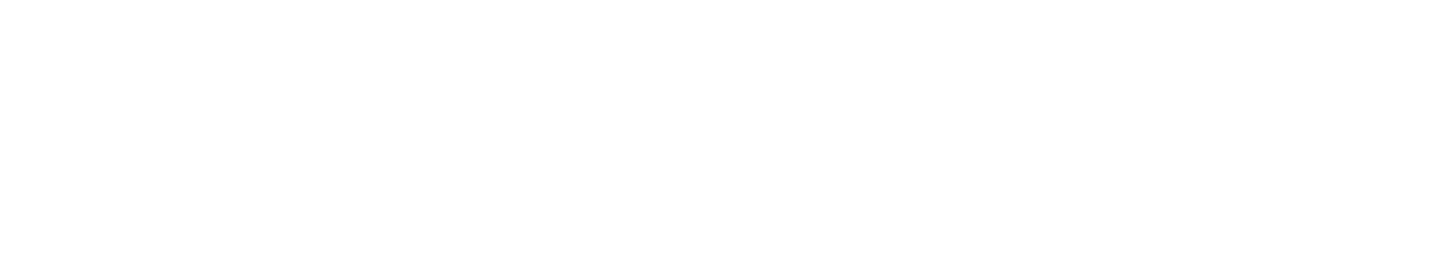 logo-hotel-george-white